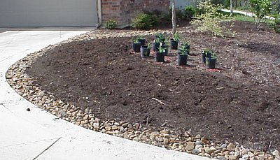21 landscaping stage 3 no 2 pictures of a custom home san